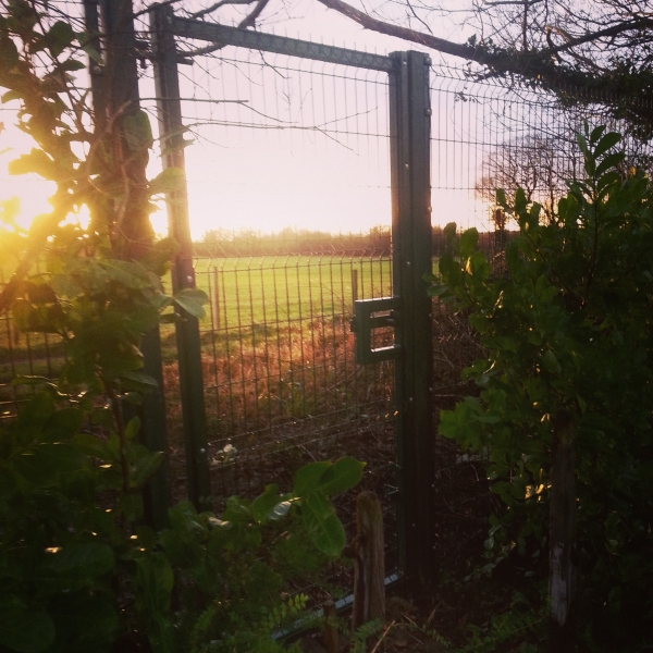 Paul Gibbons Landscapes Ltd - Fencing 1