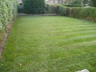 Paul Gibbons Landscapes Ltd - Garden Makeovers 21